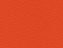 6038 Terracotta