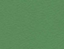 6556 Verde